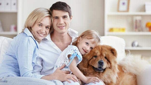 Wills & Trusts dog-young-family Direct Wills Heath